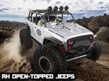 Радиоуправляемый краулер Remo Hobby RH Open-Topped Jeeps 4WD RTR масштаб 1:10